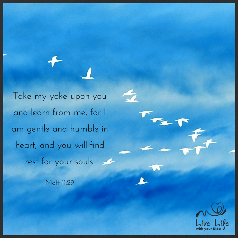 Matt 11:29
